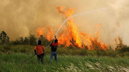 Pembakaran: Pembakaran Tingkat 3 dengan luka itu